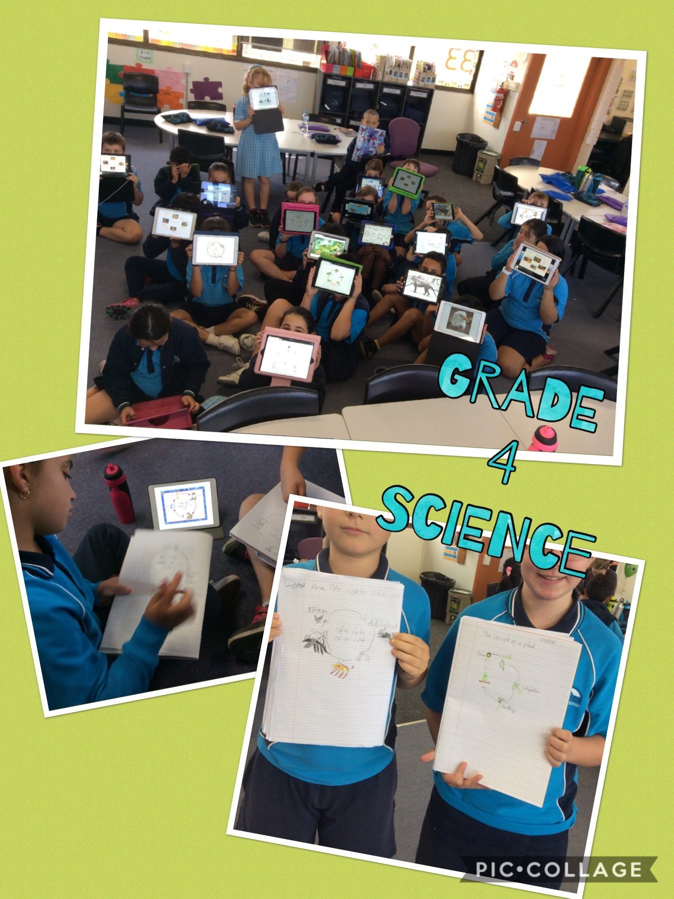 /uploaded_files/media/gallery/1529903739iPads in Science.jpg